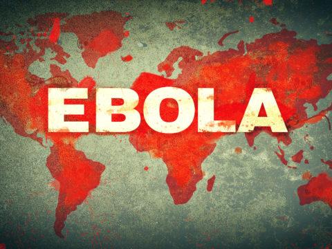 В караване направляющийся в США обнаружен вирус Эбола!