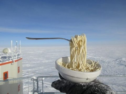 Лапша в антарктиде