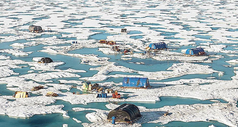 Ковчег для Арктики