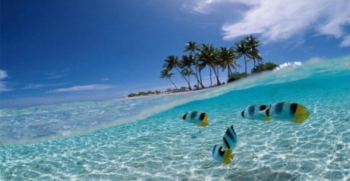 Отдых на острове Бали: цены и предложения от туроператора «Свои люди»