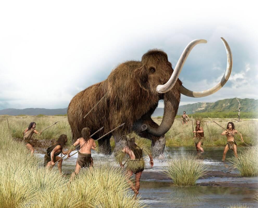 Достаточно наивное изображение охоты на мамонта / ©Wikimedia Commons