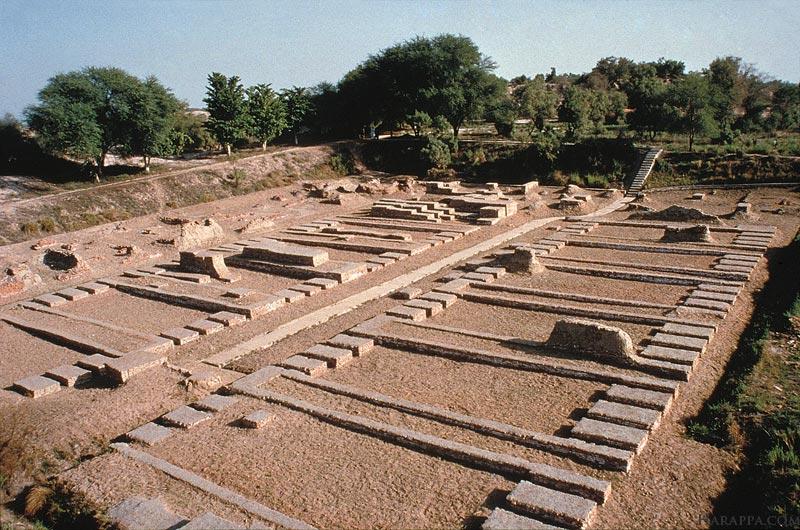 По мере развития земледельческих цивилизаций их кладовые разрастались. Фундамент этого зернохранилища хараппской цивилизации имеет размеры 45 на 45 метров / ©harappa.com