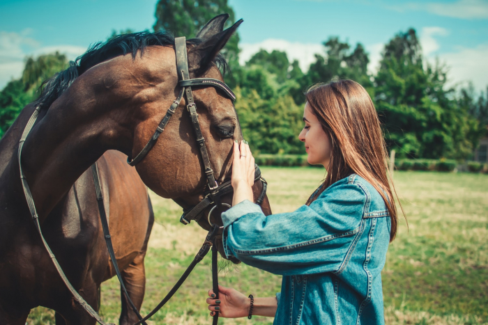 девушка с лошадью