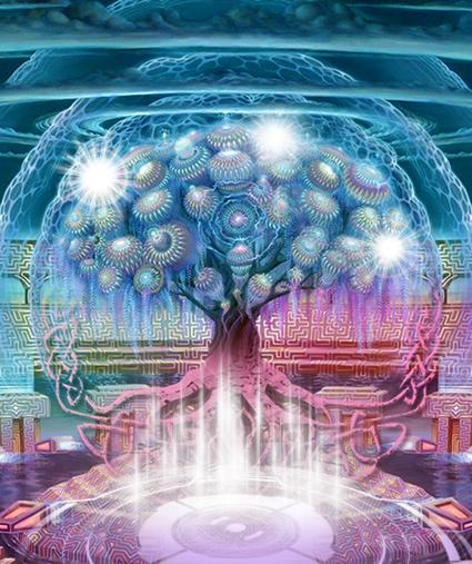 Магический род и его сборка. Синяя и красная энергии