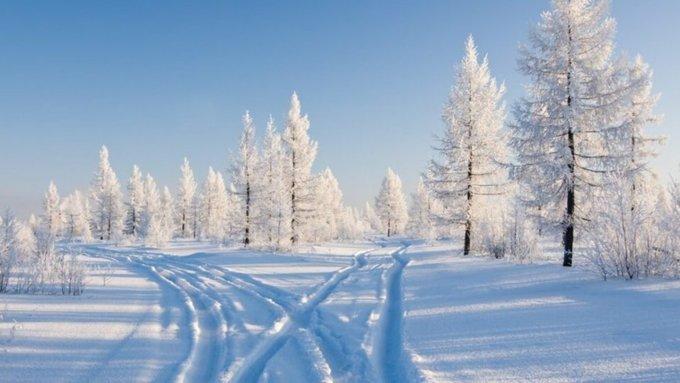 Метеоролог рассказал, когда в России начнется настоящая зима