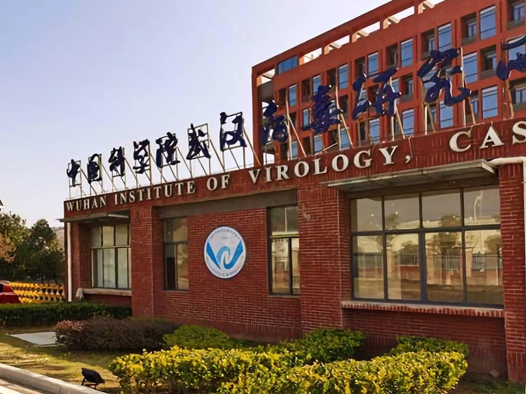 Уханьский институт вирусологии, провинция Хубэй, Китай. 2016